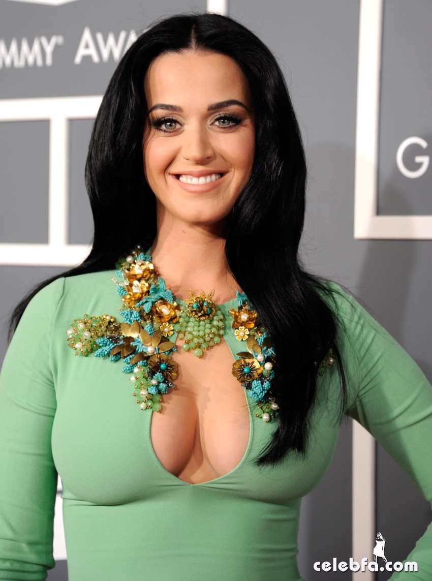 Katy Perry-Grammy Awards 2013-CelebFa_Com (1)