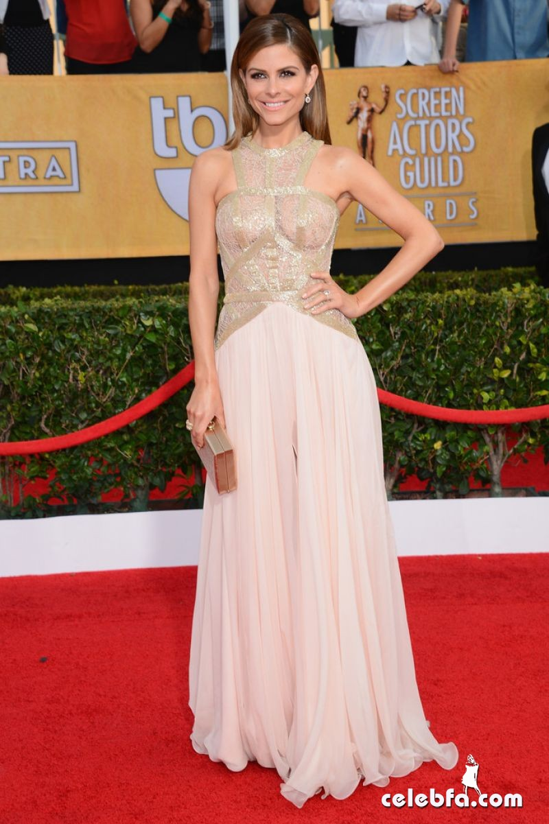 maria-menounos-at-2014-sag-awards-CelebFa (1)