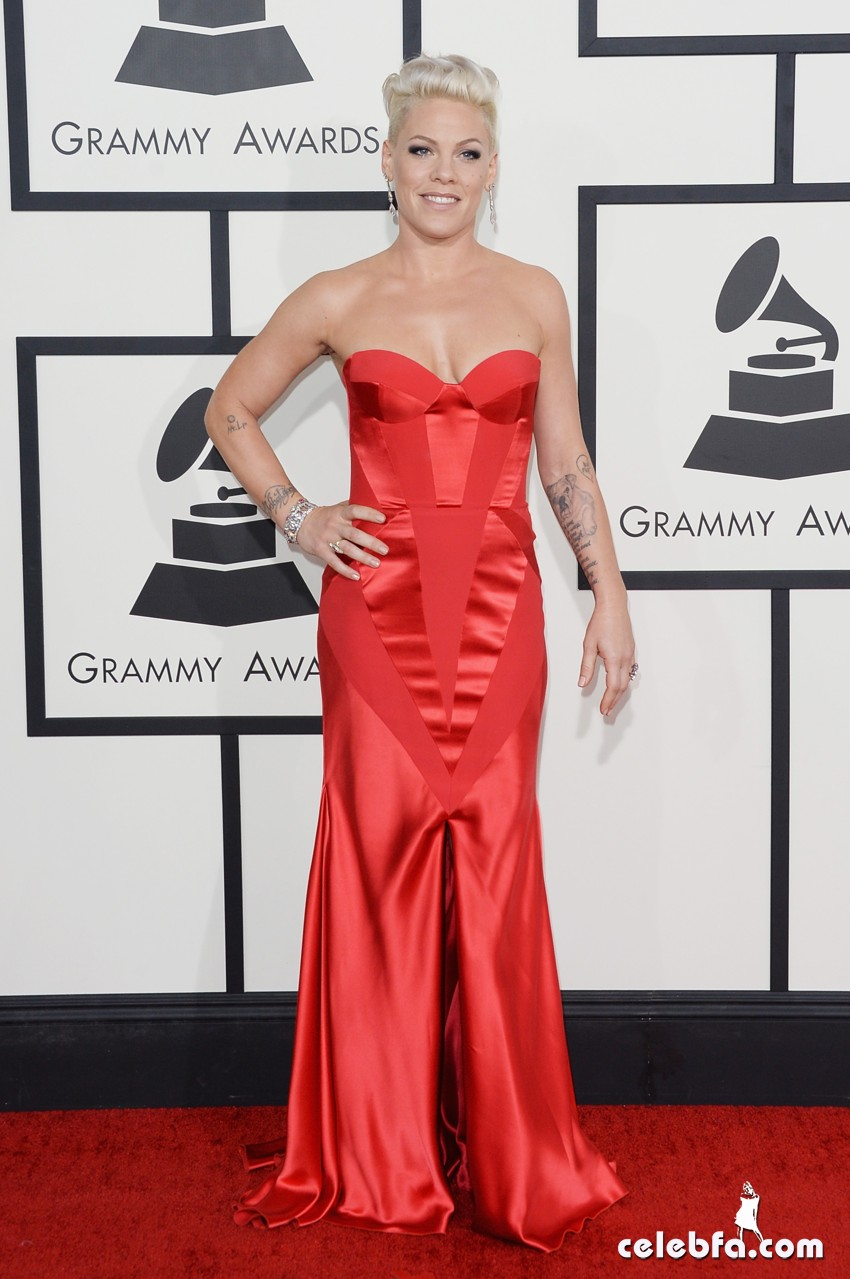 Pink-grammy awards 2014-CelebFa (1)