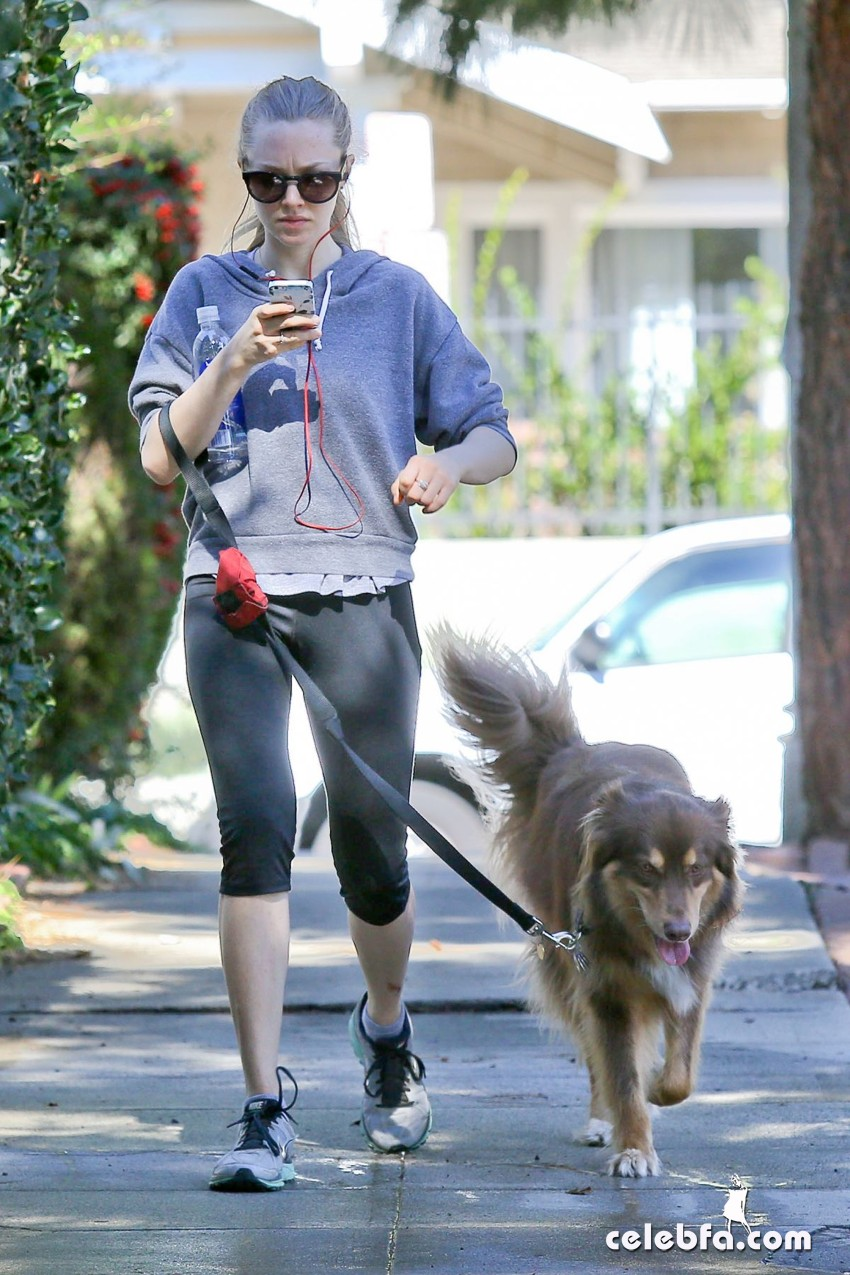 amanda-seyfried-on-the-morning-walk-with-her-dog_CelebFa (1)