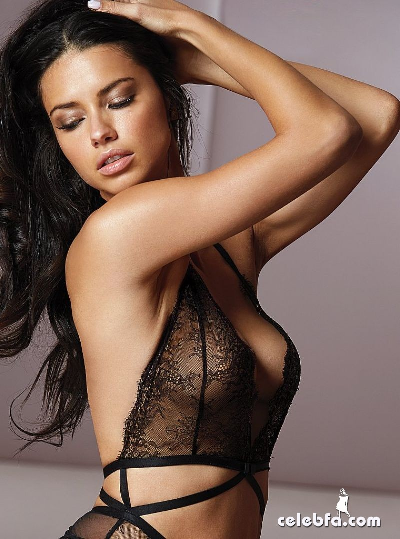 adriana-lima-victoria-s-secret-march-2014_CelebFa (1)