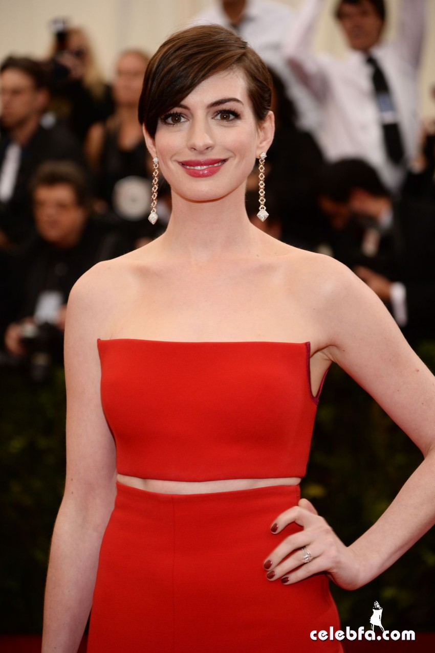anne-hathaway-at-met-gala-2014-in-new-york_CelebFa (1)