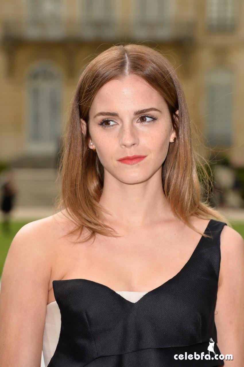 Emma Watson-Christian Dior (1)