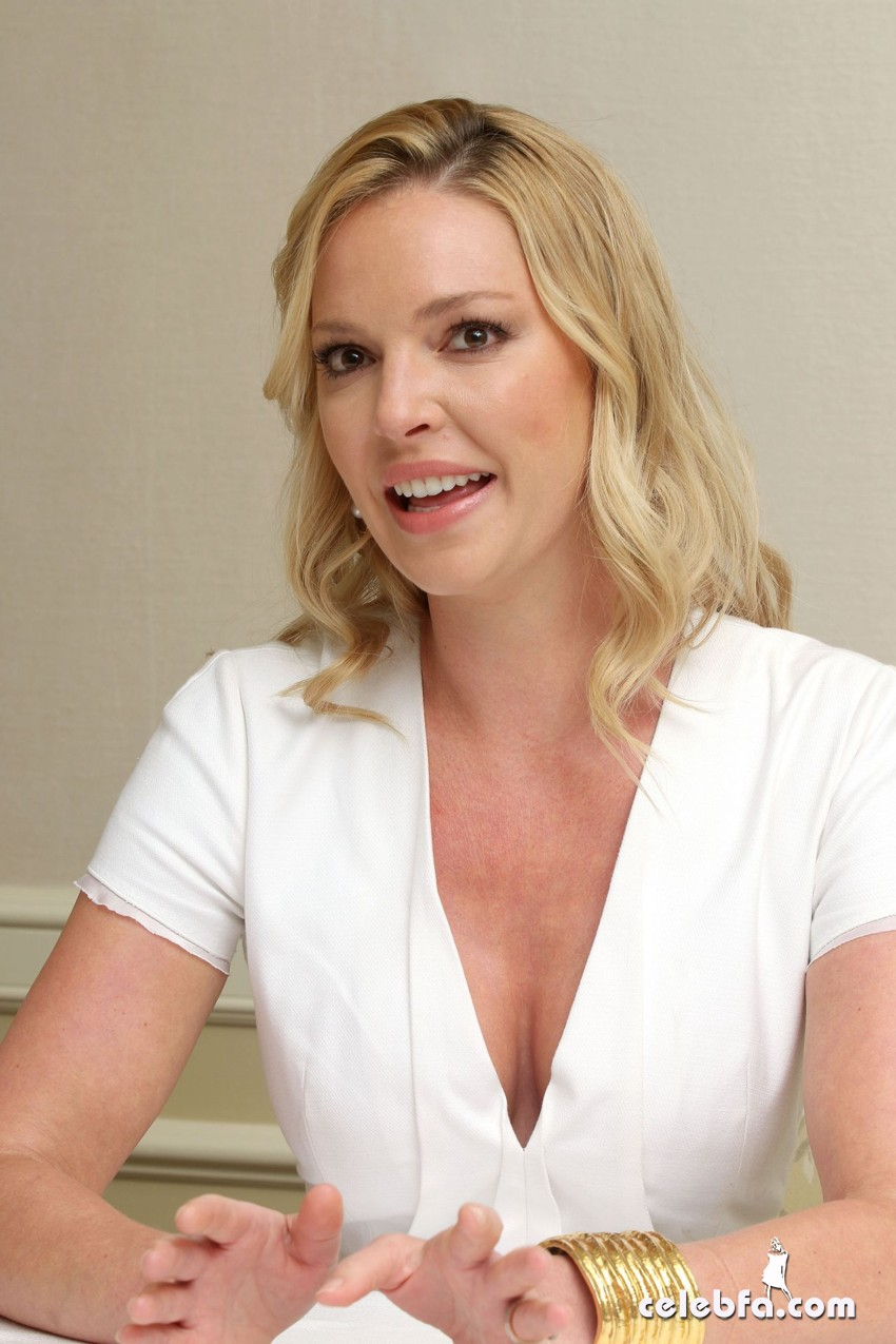katherine-heigl-state-of-affairs-press-conference-in-los-angles (1)