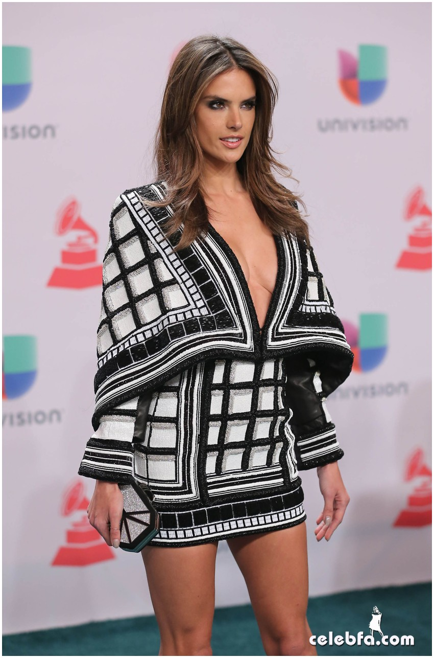 2014 Latin Grammy Awards Arrivals