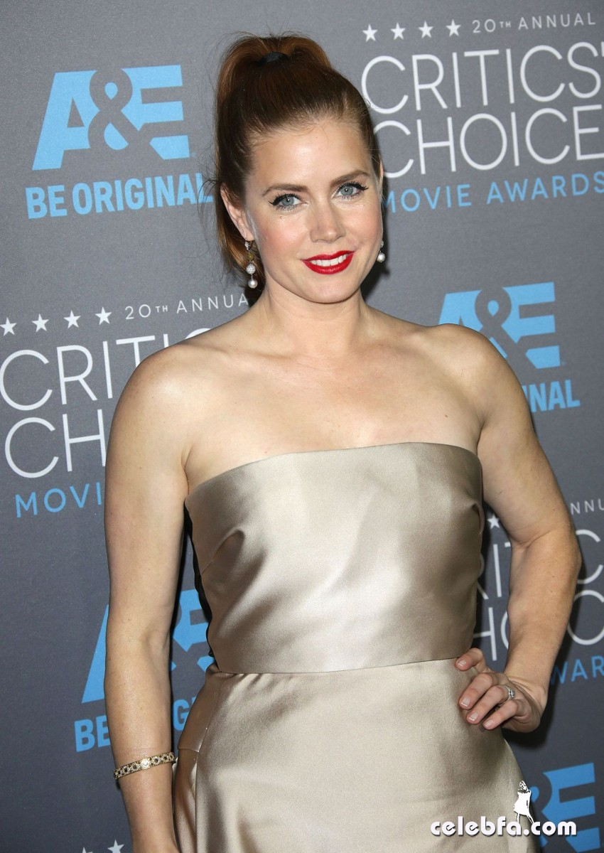 amy-adams-2015-critics-choice-movie-awards (1)