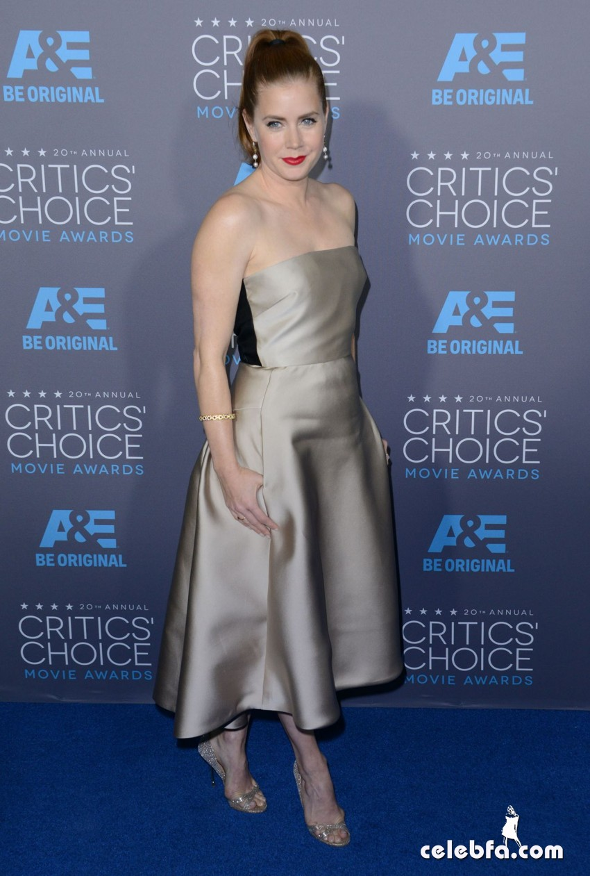 amy-adams-2015-critics-choice-movie-awards (5)