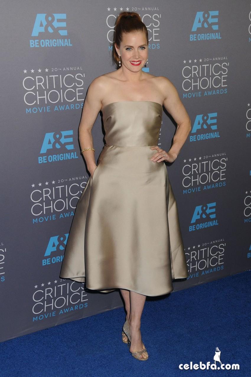 amy-adams-2015-critics-choice-movie-awards (6)