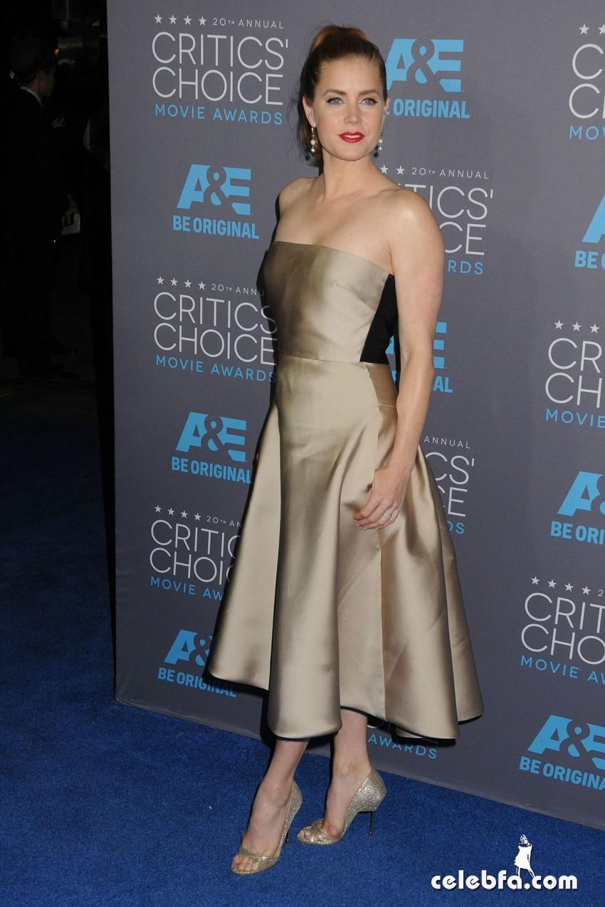 amy-adams-2015-critics-choice-movie-awards (9)