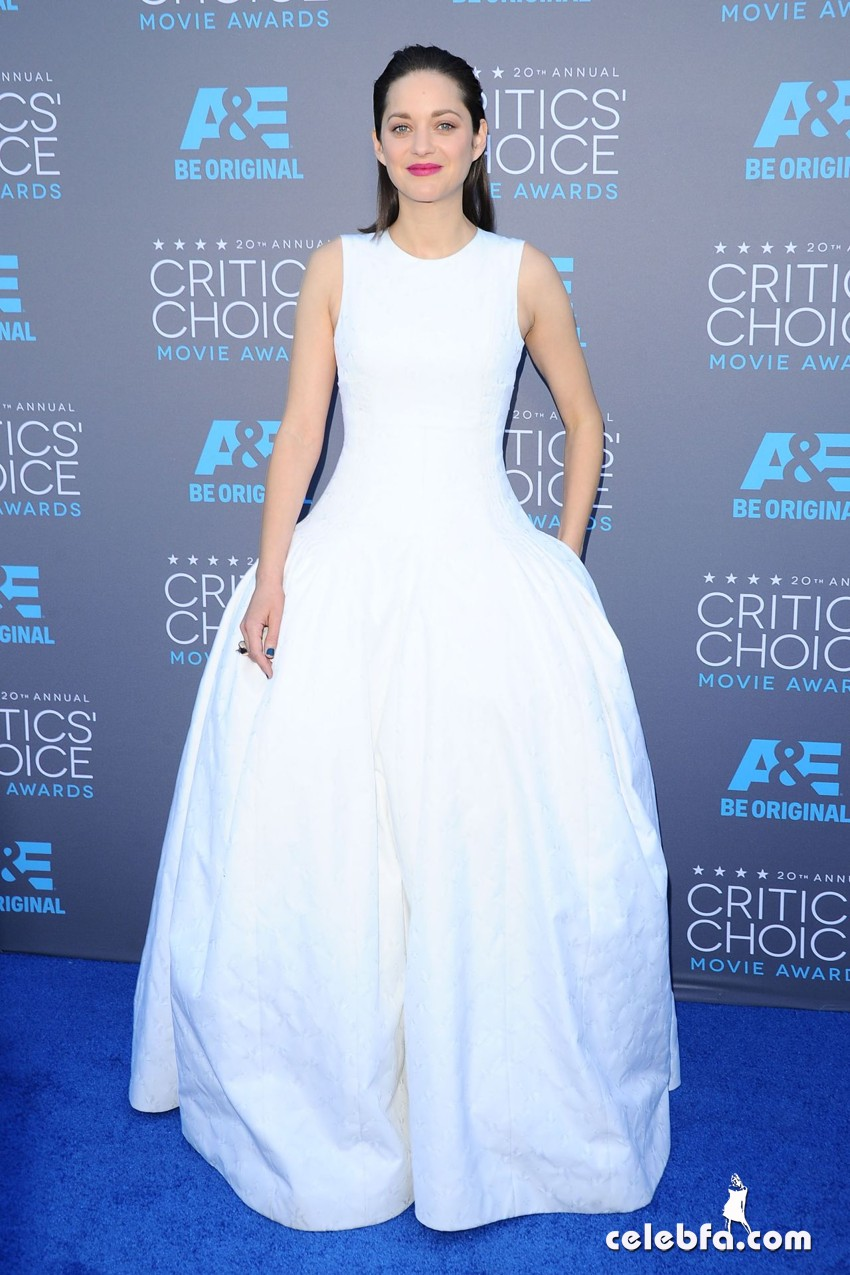 marion-cotillard-2015-critics-choice-movie-awards (1)