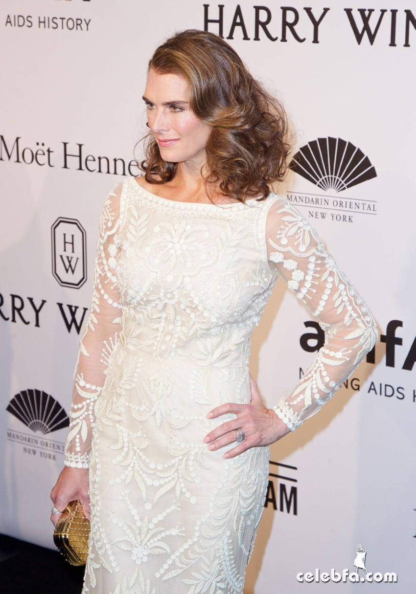 brooke-shields-2015-amfar-new-york-gala_4