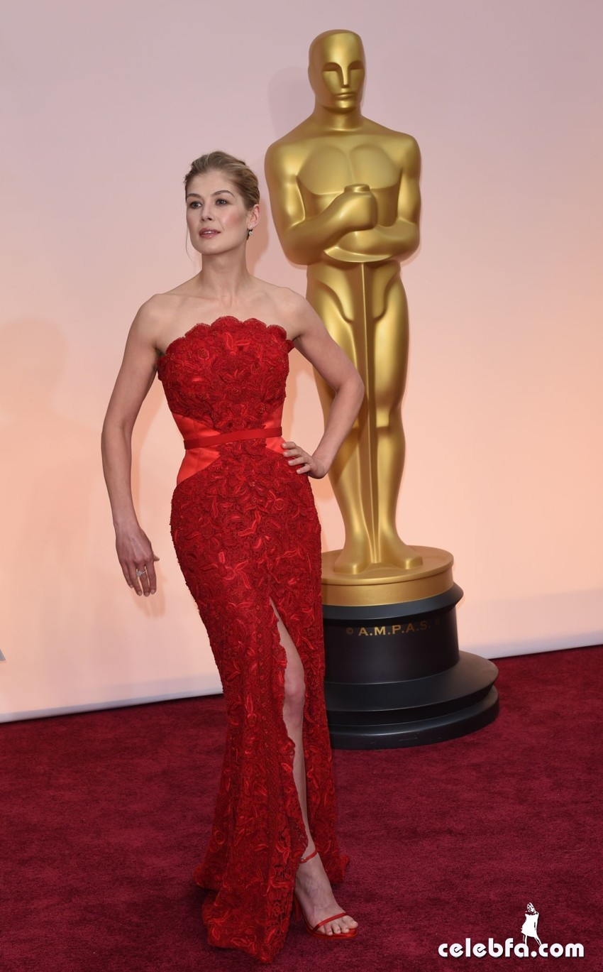 rosamund-pike-2015-oscars-red-carpet (5)