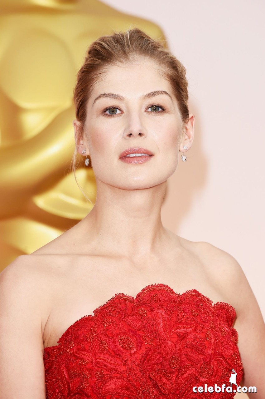 rosamund-pike-2015-oscars-red-carpet (6)