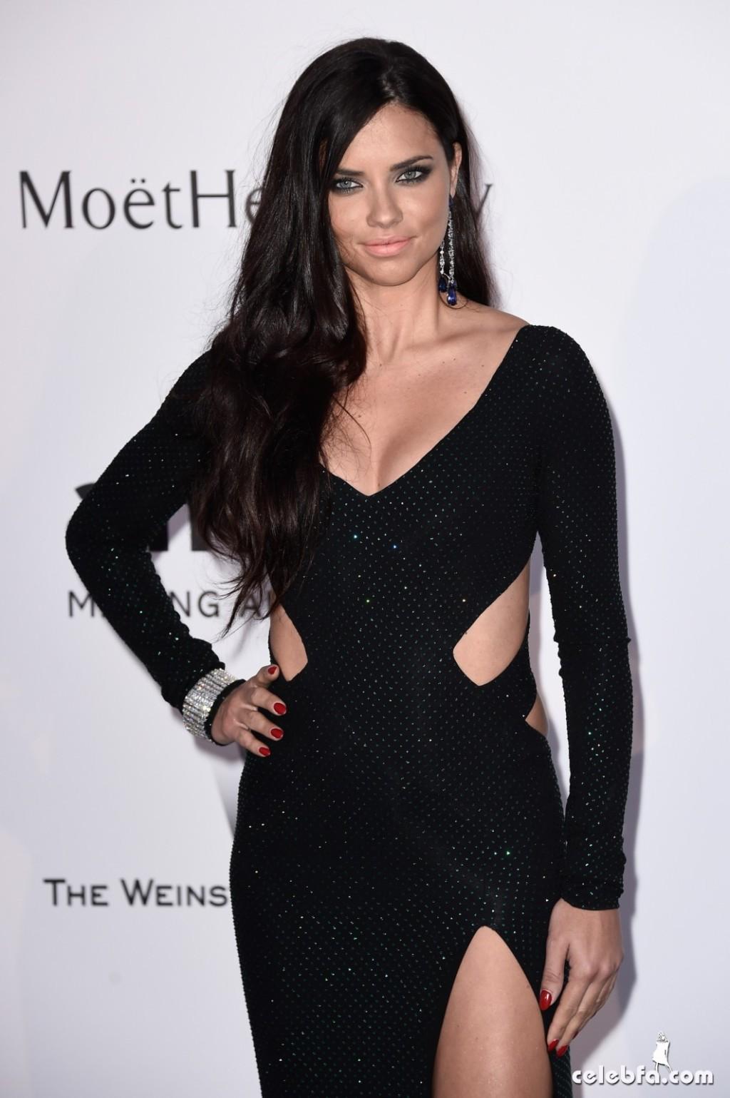 Adriana lima_amfAR's Cannes Gala (1)
