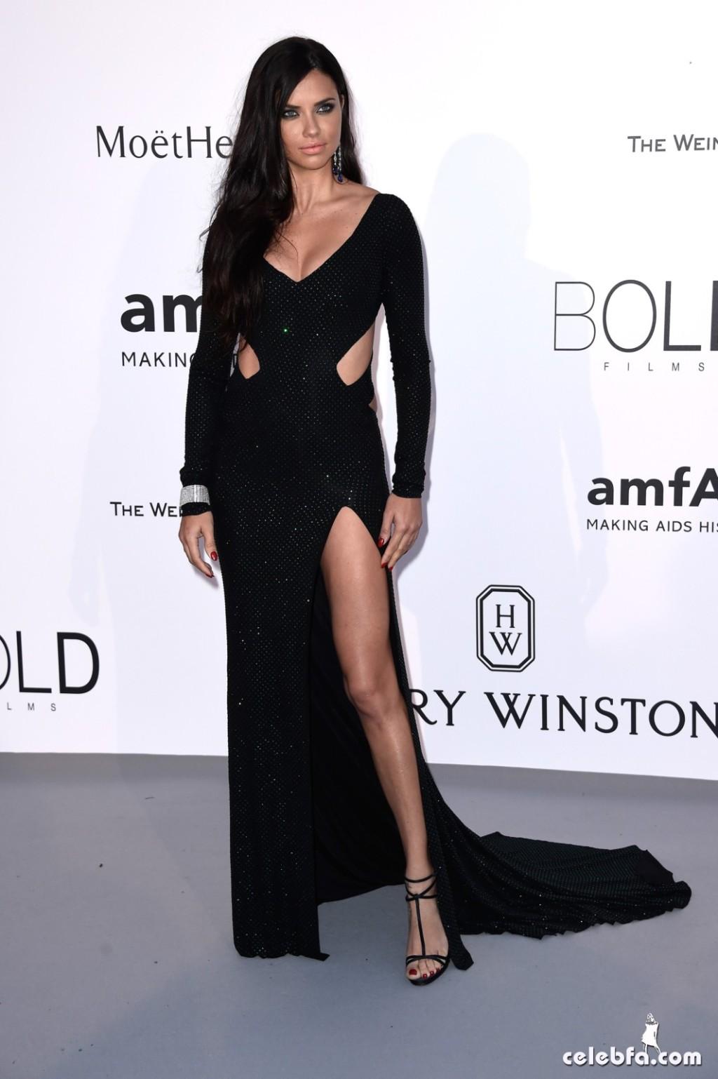 Adriana lima_amfAR's Cannes Gala (2)