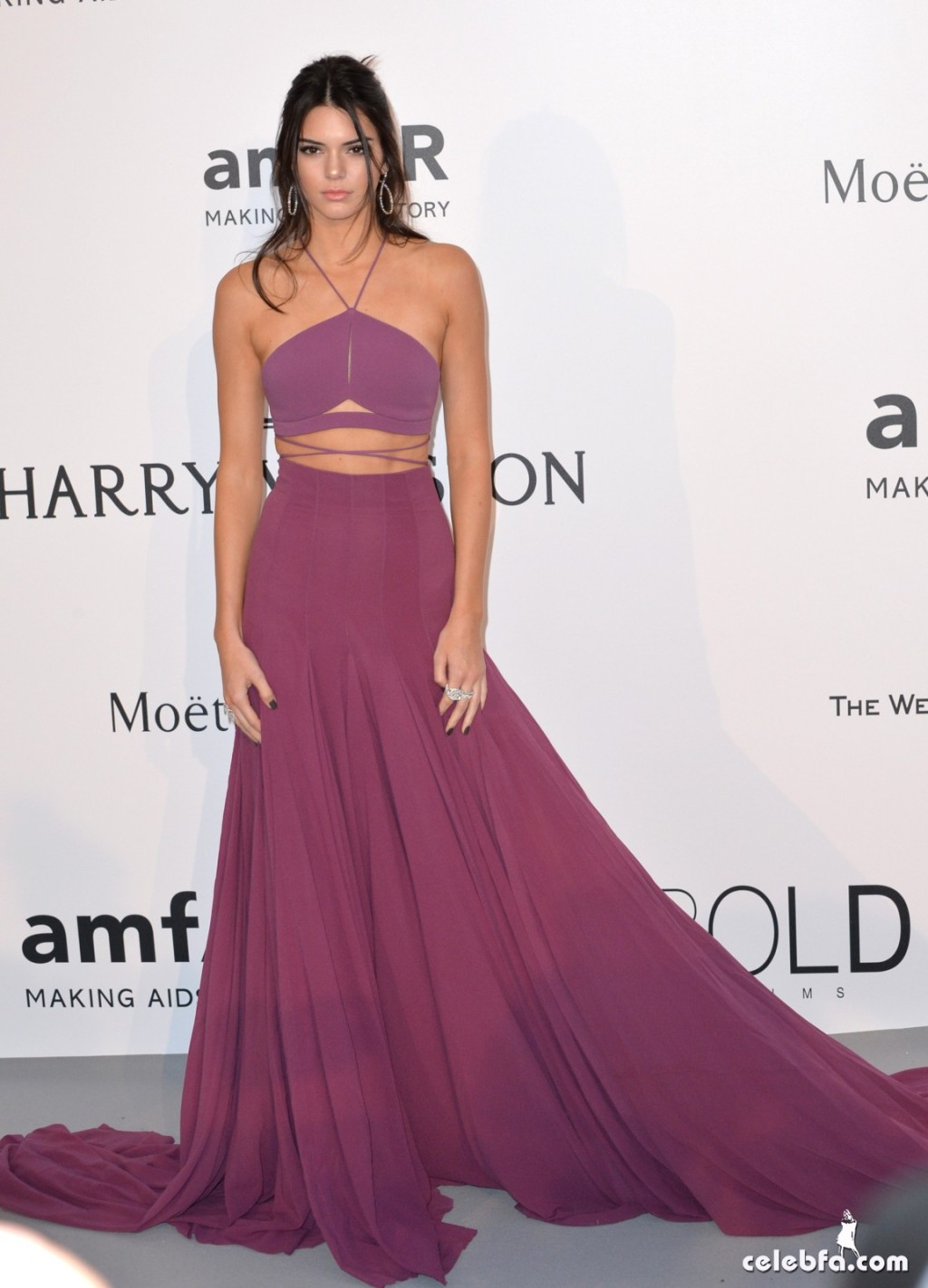Kendall_Jenner_amfAR's Cannes Gala (16)