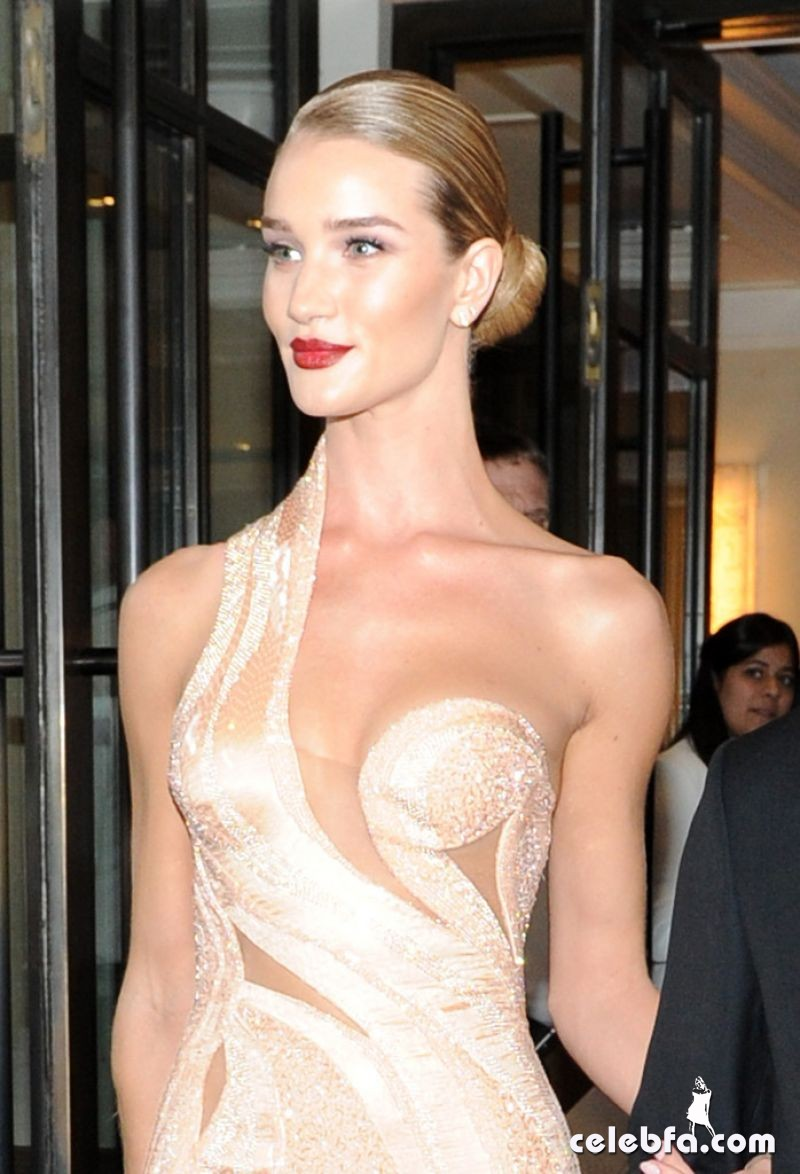rosie-huntington-whiteley-at-met-gala-2015 (2)