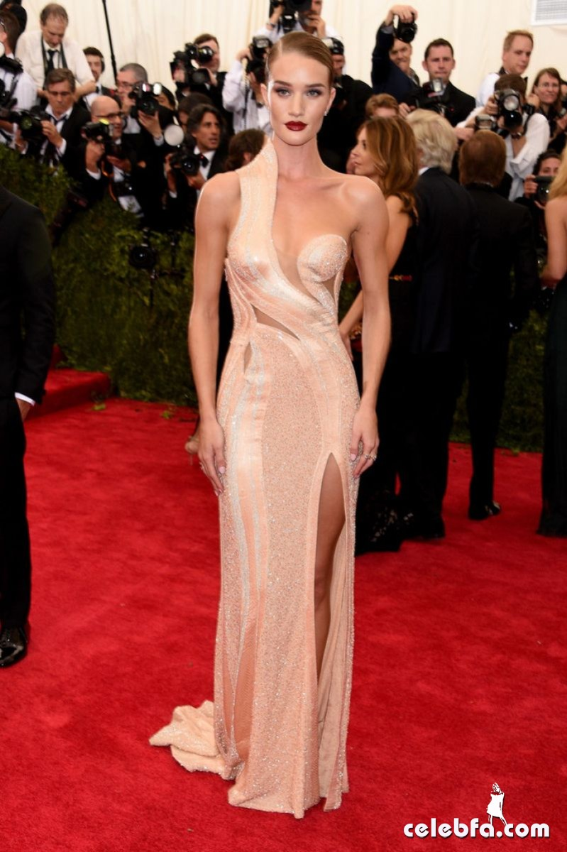 rosie-huntington-whiteley-at-met-gala-2015 (3)
