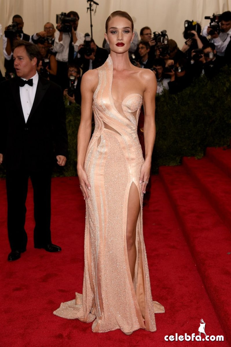rosie-huntington-whiteley-at-met-gala-2015 (4)