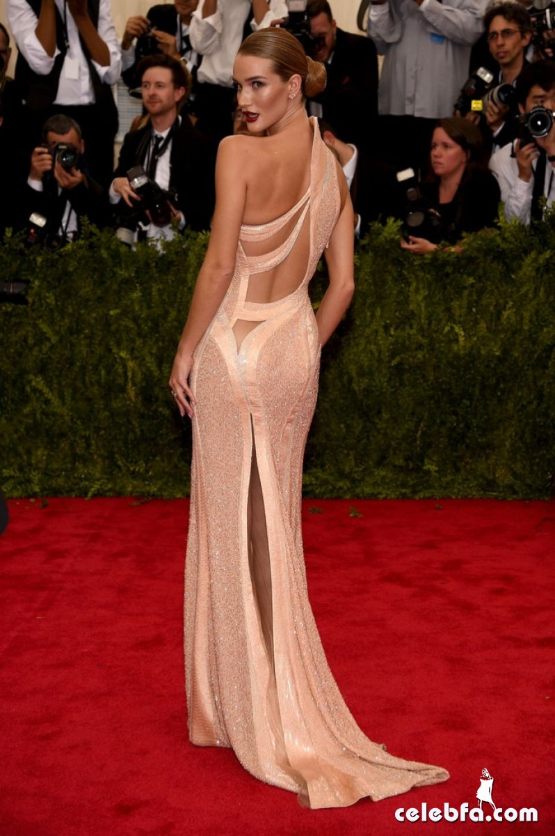 rosie-huntington-whiteley-at-met-gala-2015 (5)