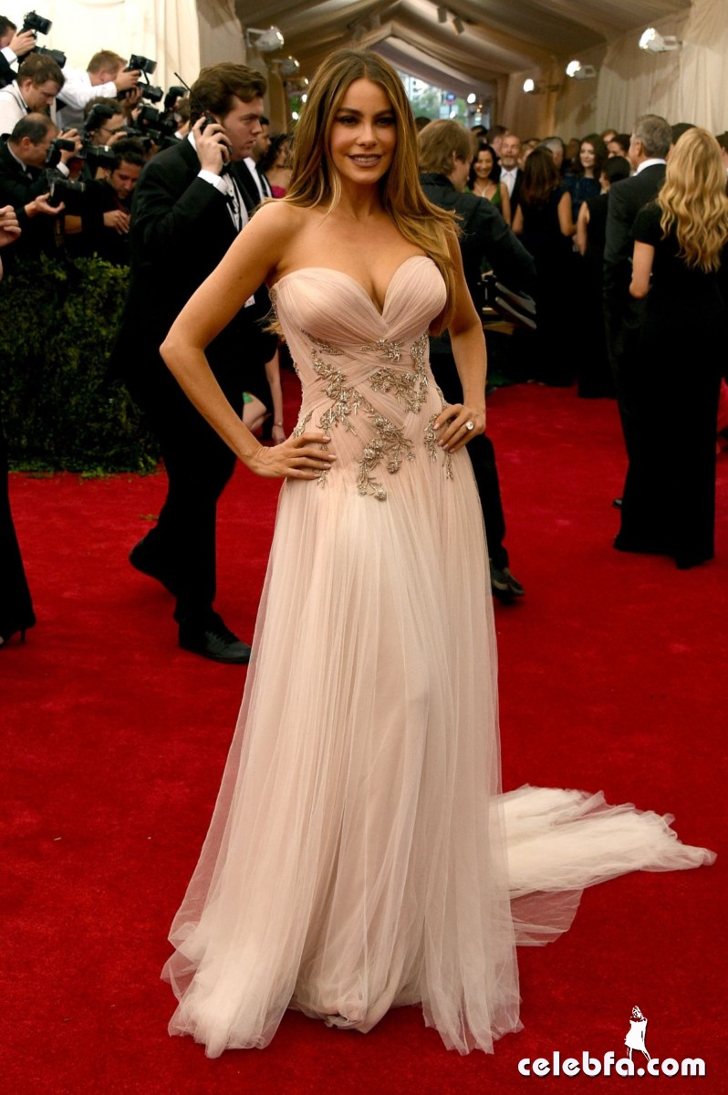 sofia-vergara-at-met-gala-2015 (2)