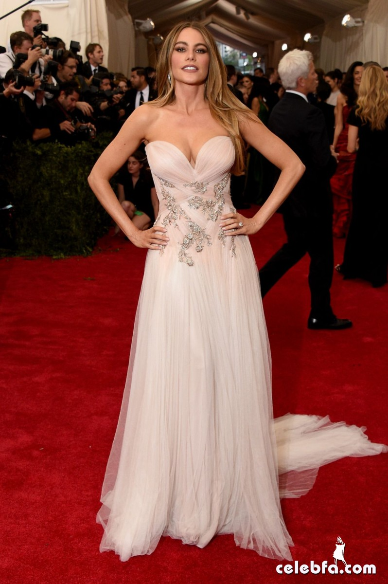 sofia-vergara-at-met-gala-2015 (3)