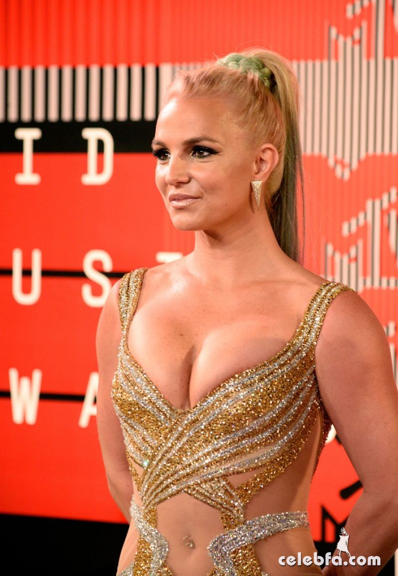 britney-spears-at-mtv-video-music-awards-2015 (2)