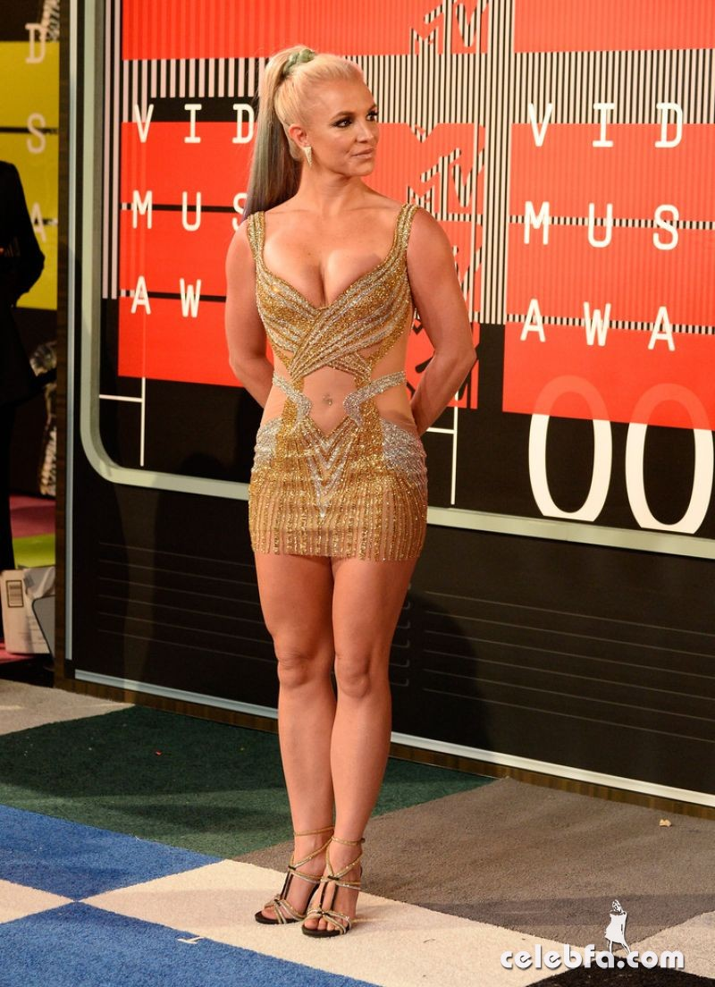 britney-spears-at-mtv-video-music-awards-2015 (3)