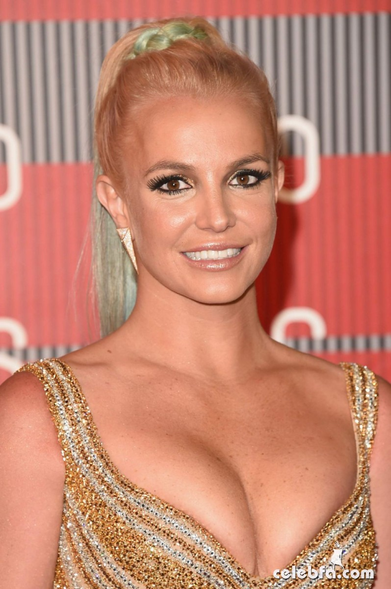 britney-spears-at-mtv-video-music-awards-2015 (9)