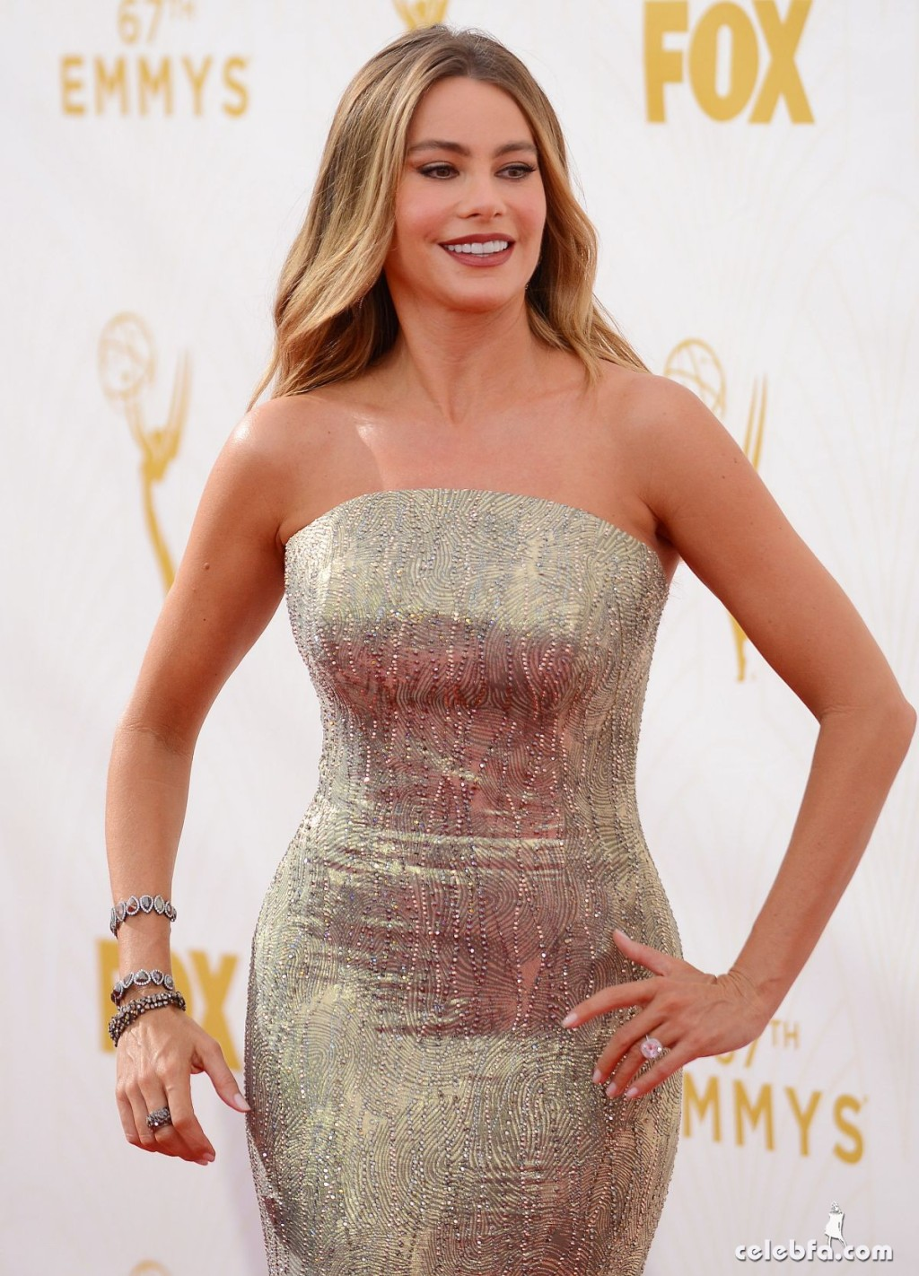 sofia-vergara-at-2015-emmy-awards (1)