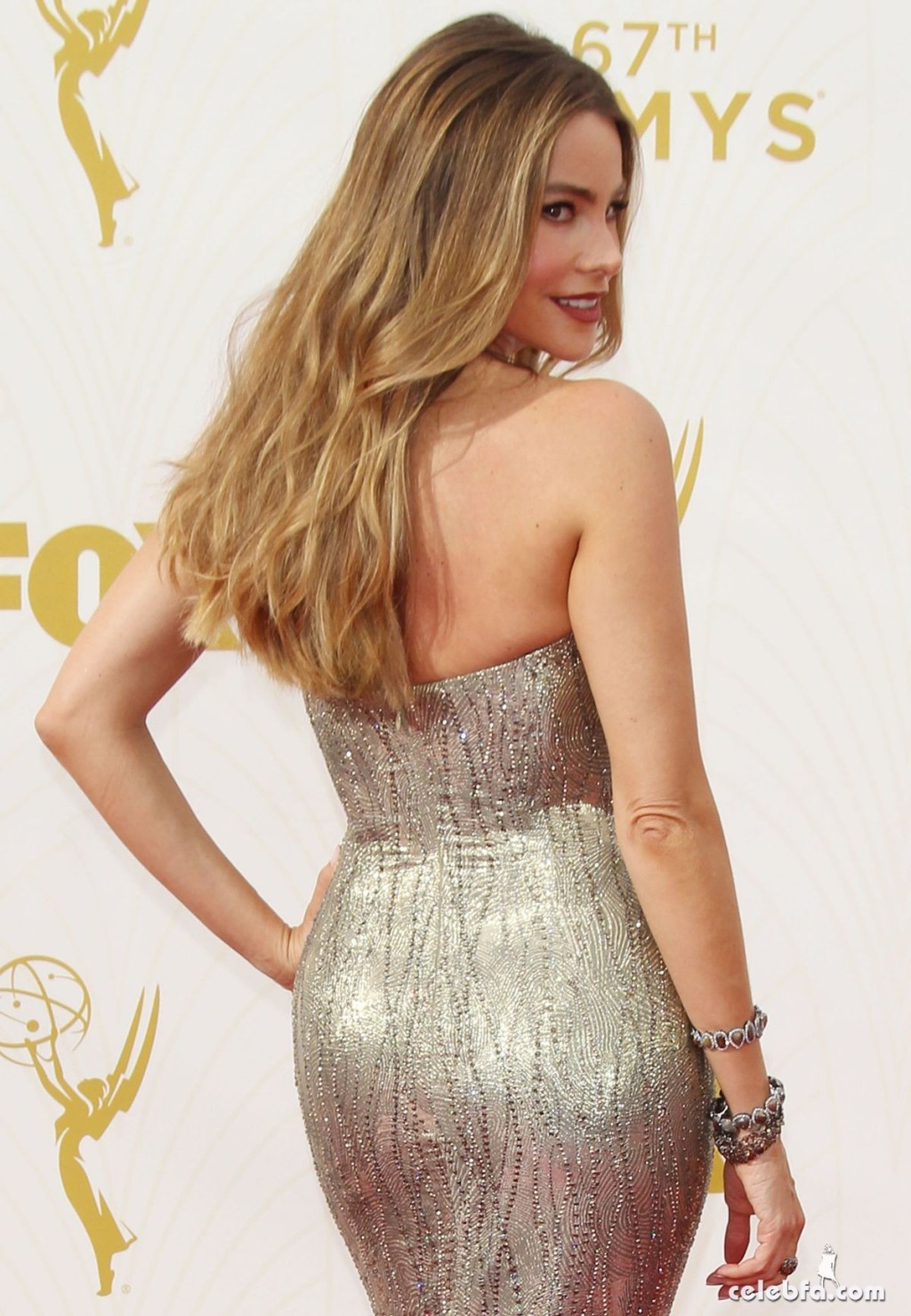 sofia-vergara-at-2015-emmy-awards (2)