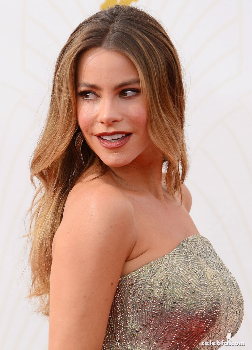sofia-vergara-at-2015-emmy-awards (7)