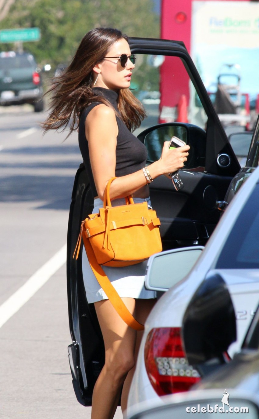 alessandra-ambrosio-out-and-about-in-brentwood (3)