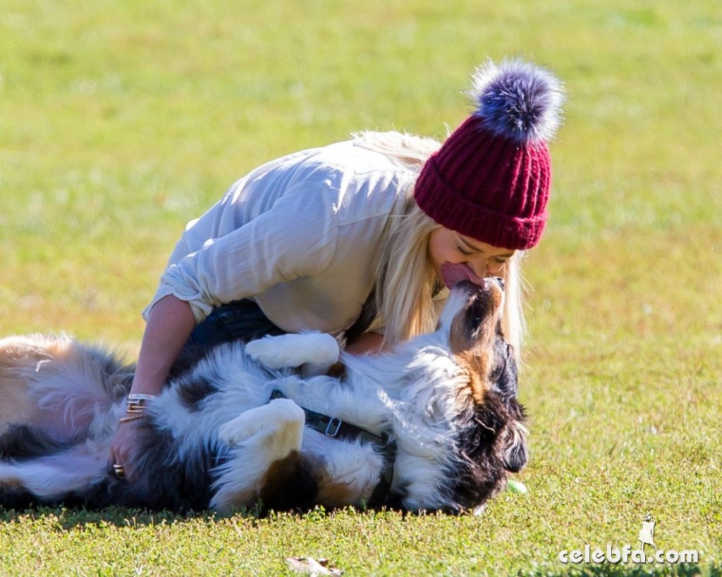 hilary-duff-playing-with-dogs-at-a-park-in-new-york (1)