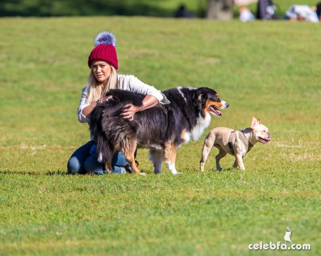 hilary-duff-playing-with-dogs-at-a-park-in-new-york (5)
