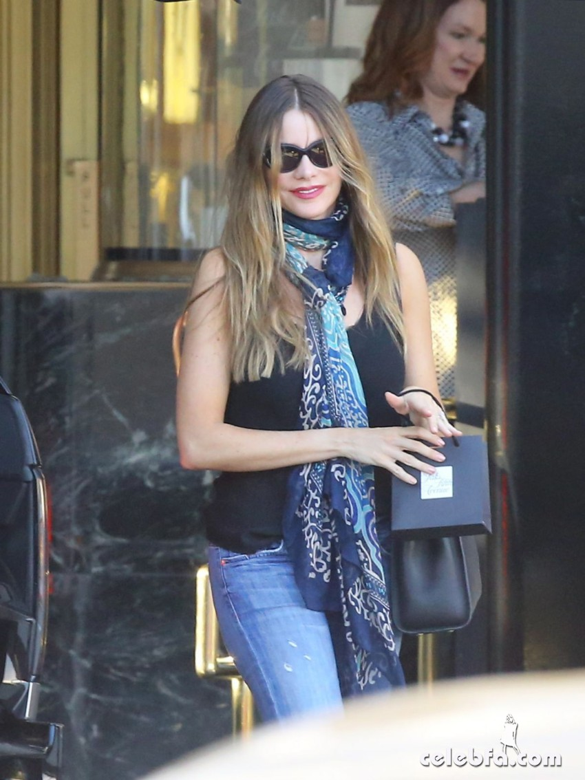 sofia-vergara-out-and-about-in-los-angeles (7)
