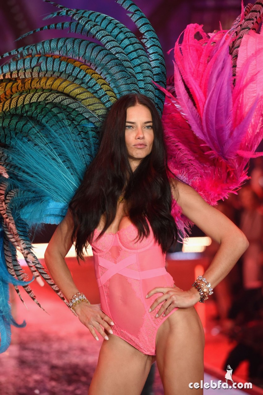 adriana-lima-at-victoria-s-secret-2015-fashion-show (3)
