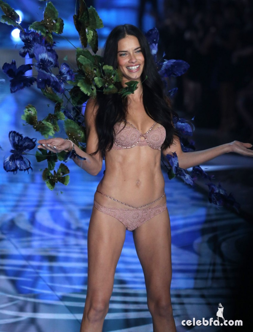 adriana-lima-at-victoria-s-secret-2015-fashion-show (6)
