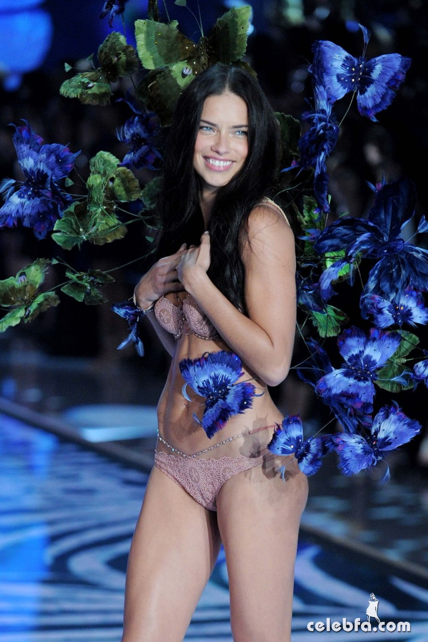 adriana-lima-at-victoria-s-secret-2015-fashion-show (7)