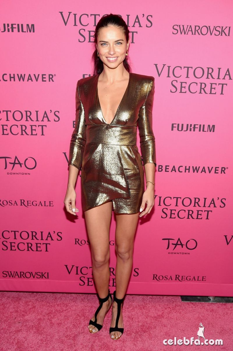 adriana-lima-at-victoria-s-secret-2015-fashion-show-after-party-11-10-2015_2