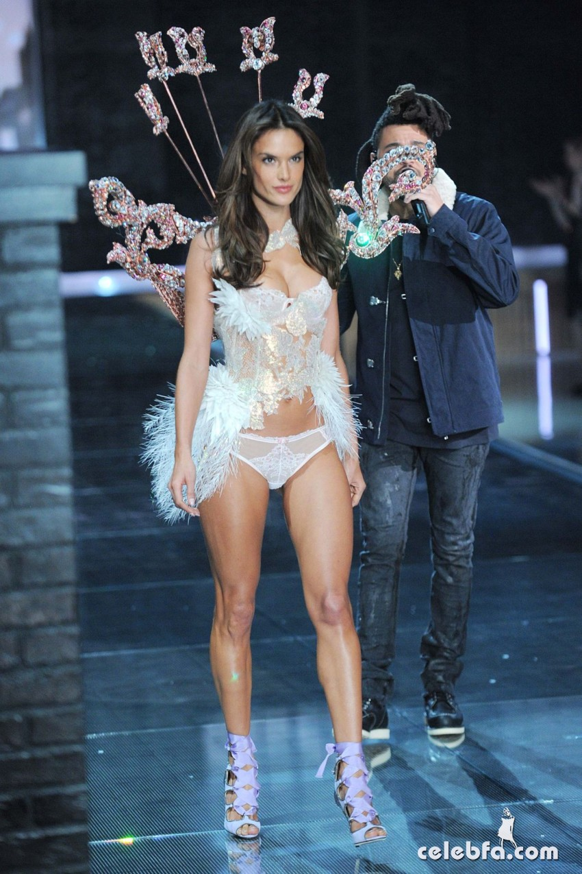 alessandra-ambrosio-at-victoria-s-secret-2015-fashion-show (8)