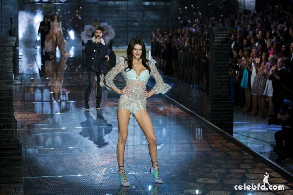 kendall-jenner-at-victoria-s-secret-2015-fashion-show-in-new-york (4)