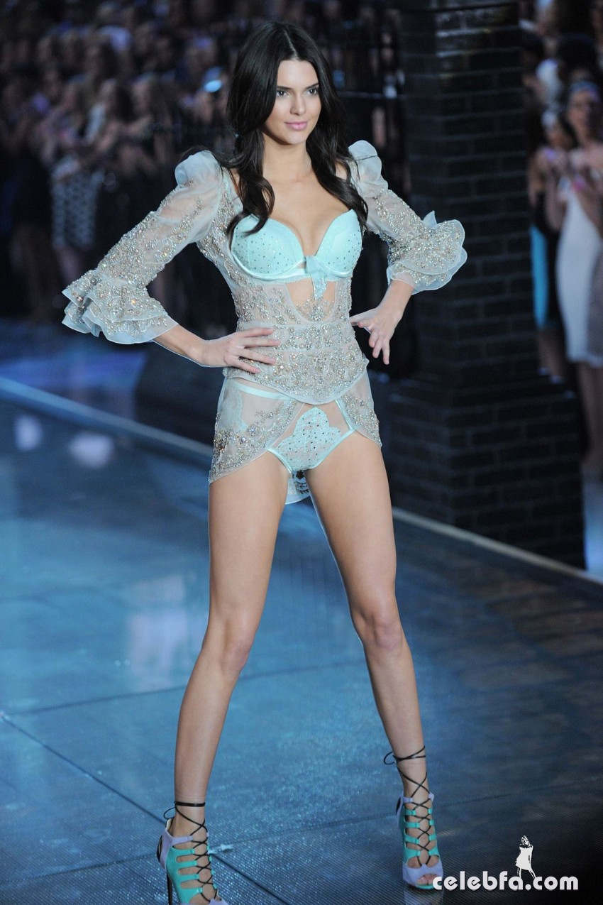 kendall-jenner-at-victoria-s-secret-2015-fashion-show-in-new-york (8)