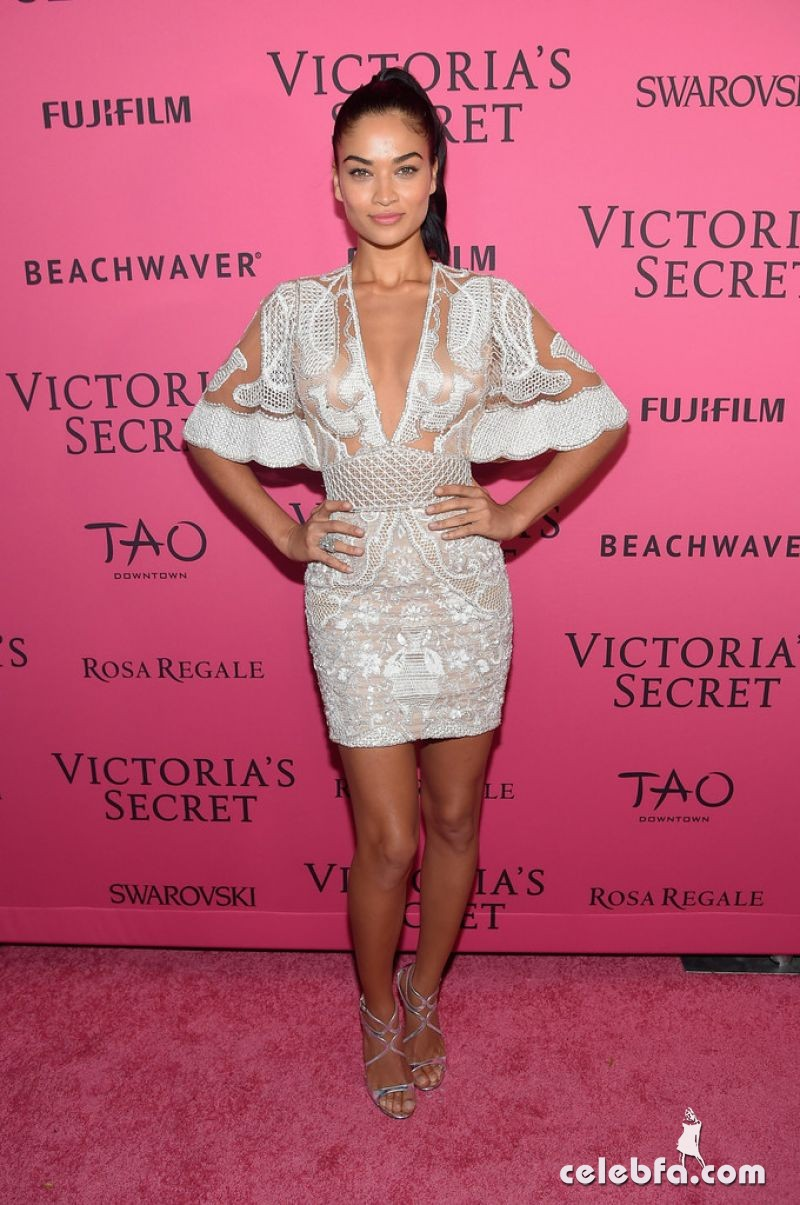 shanina-shaik-at-victoria-s-secret-2015-fashion-show-after-party-11-10-2015_3