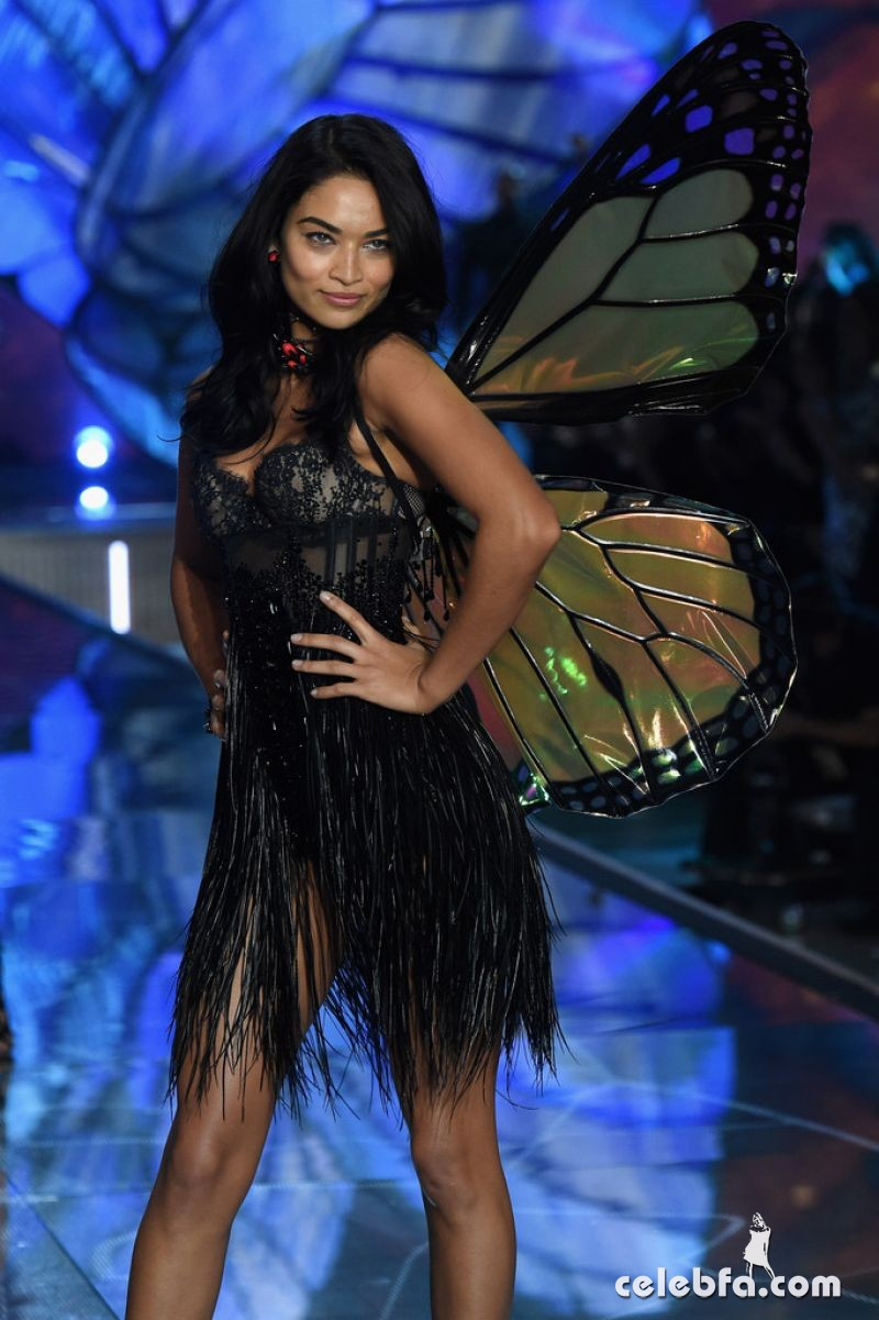 shanina-shaik-at-victoria-s-secret-2015-fashion-show-in-new-york (1)