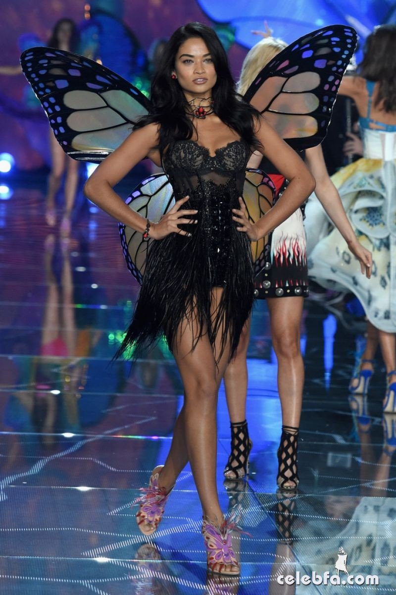 shanina-shaik-at-victoria-s-secret-2015-fashion-show-in-new-york (5)