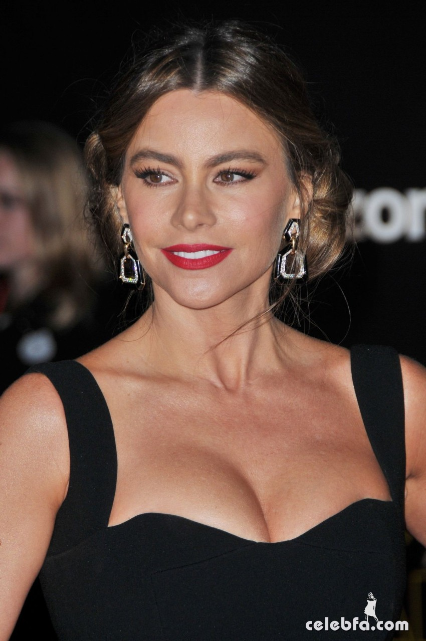sofia-vergara-at-star-wars-episode-vii-the-force-awakens-premiere-in-hollywood (4)