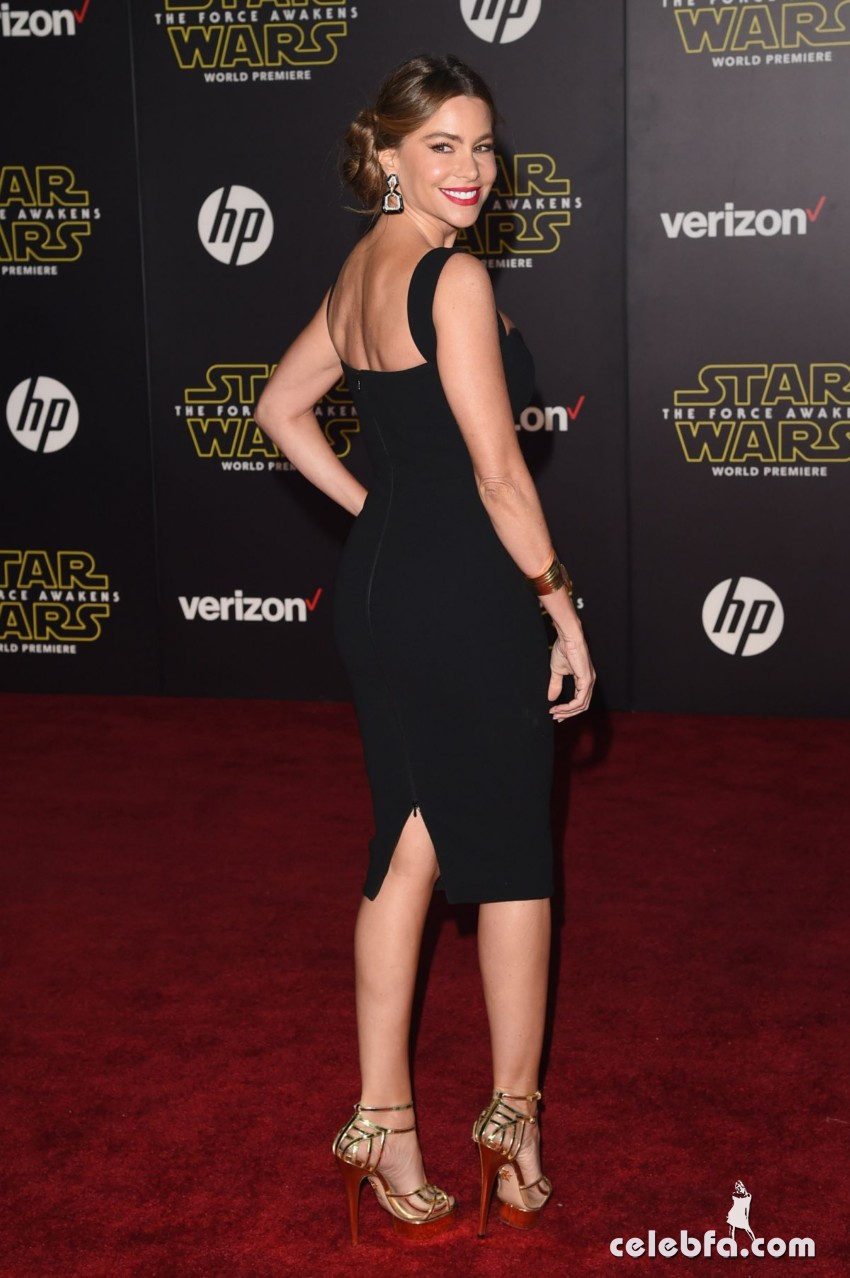 sofia-vergara-at-star-wars-episode-vii-the-force-awakens-premiere-in-hollywood (5)