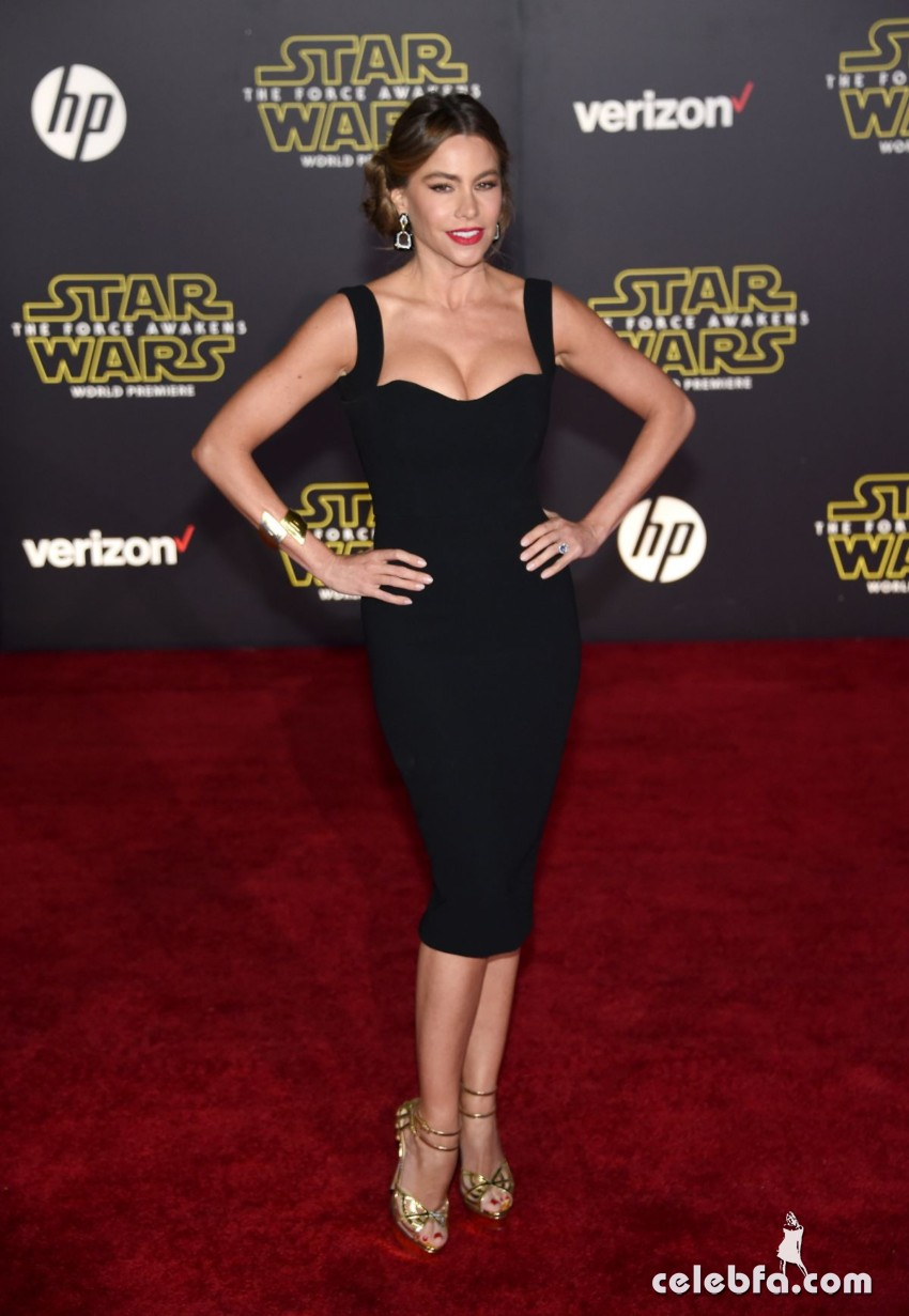 sofia-vergara-at-star-wars-episode-vii-the-force-awakens-premiere-in-hollywood (6)