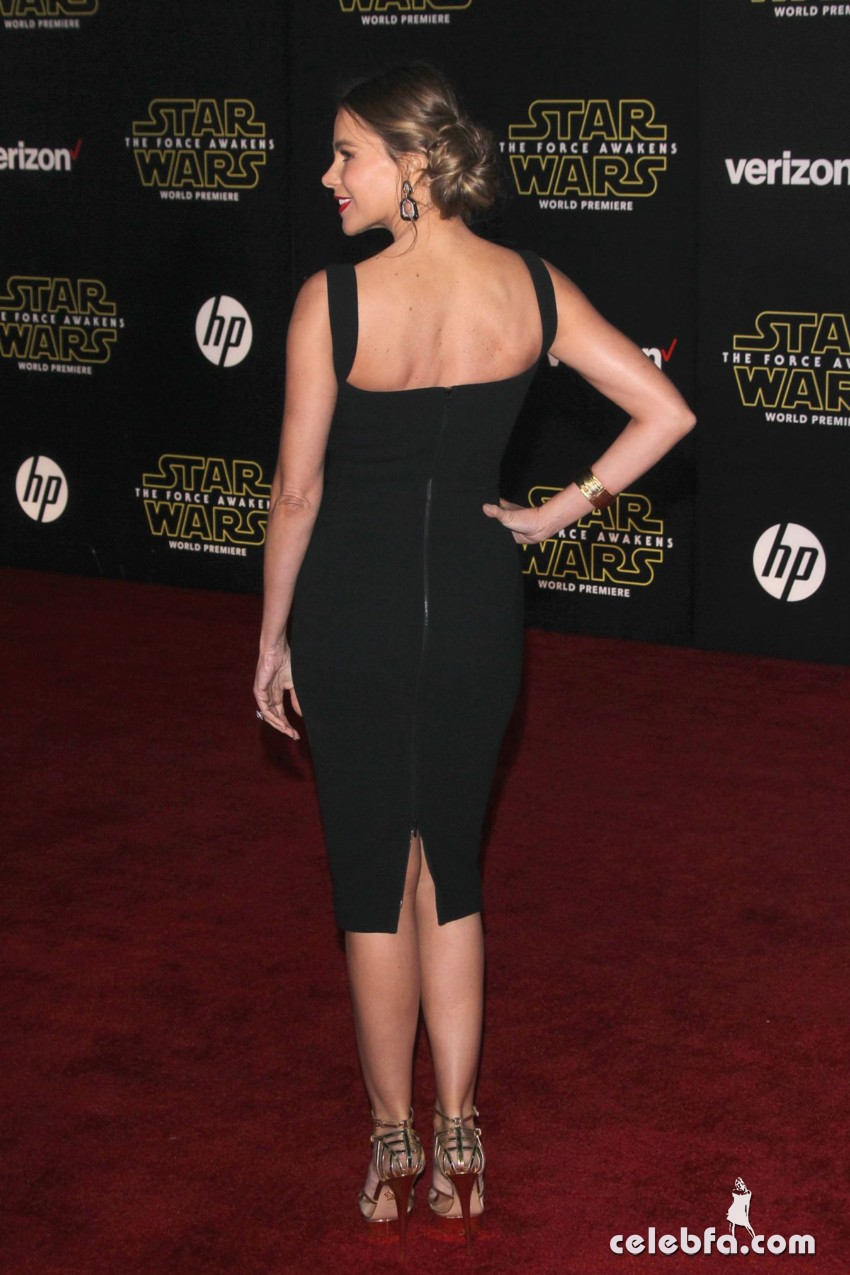 sofia-vergara-at-star-wars-episode-vii-the-force-awakens-premiere-in-hollywood (8)